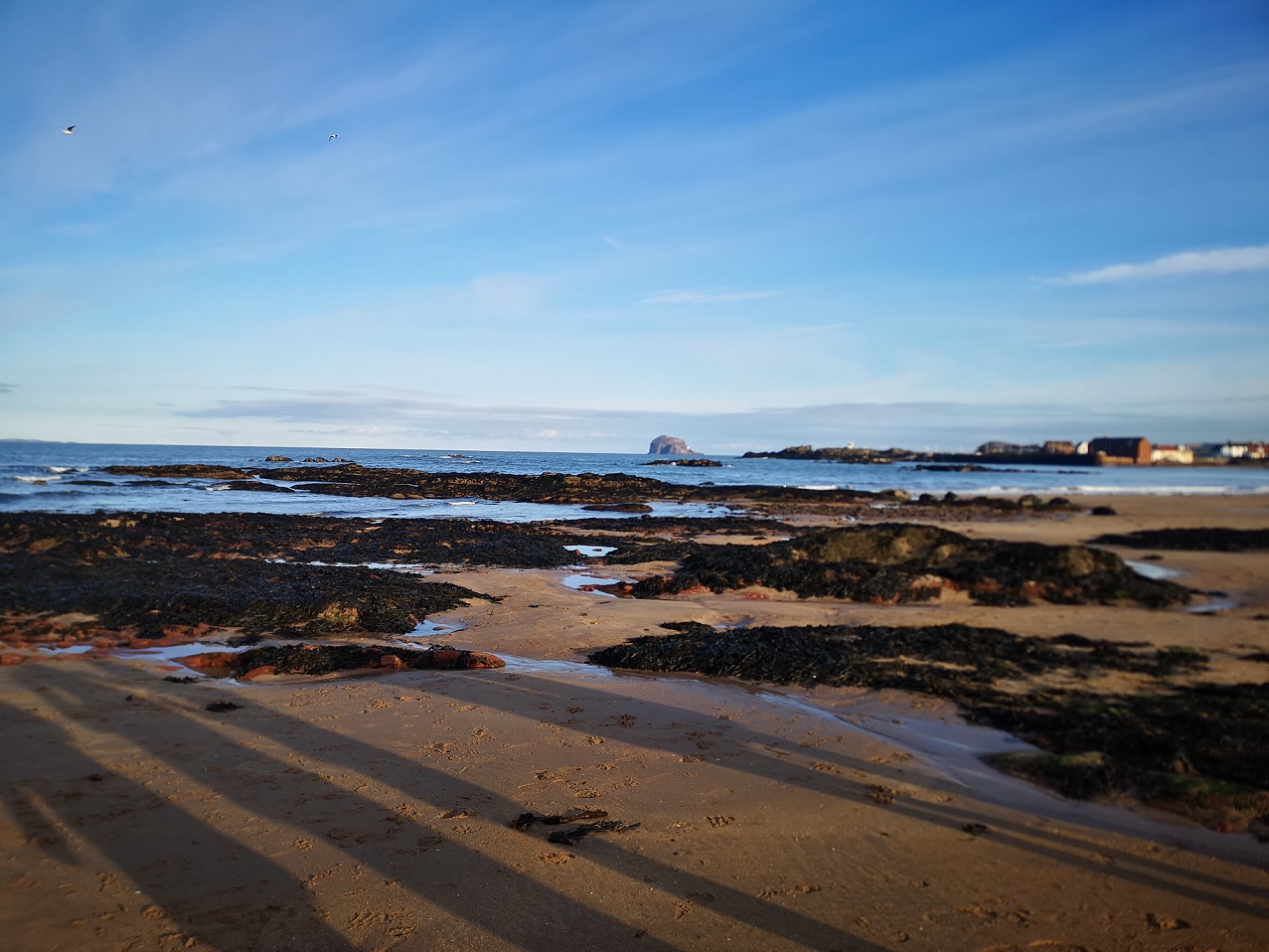 The view out to the Bass Rock