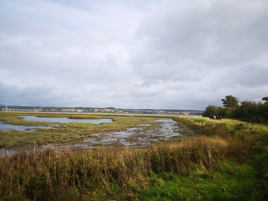 the view of the forth at Skinflats